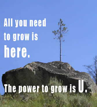 The Power to Grow is Here. The Power to Grow is U.